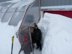 Will shovels out the door to the lean-to coldframe